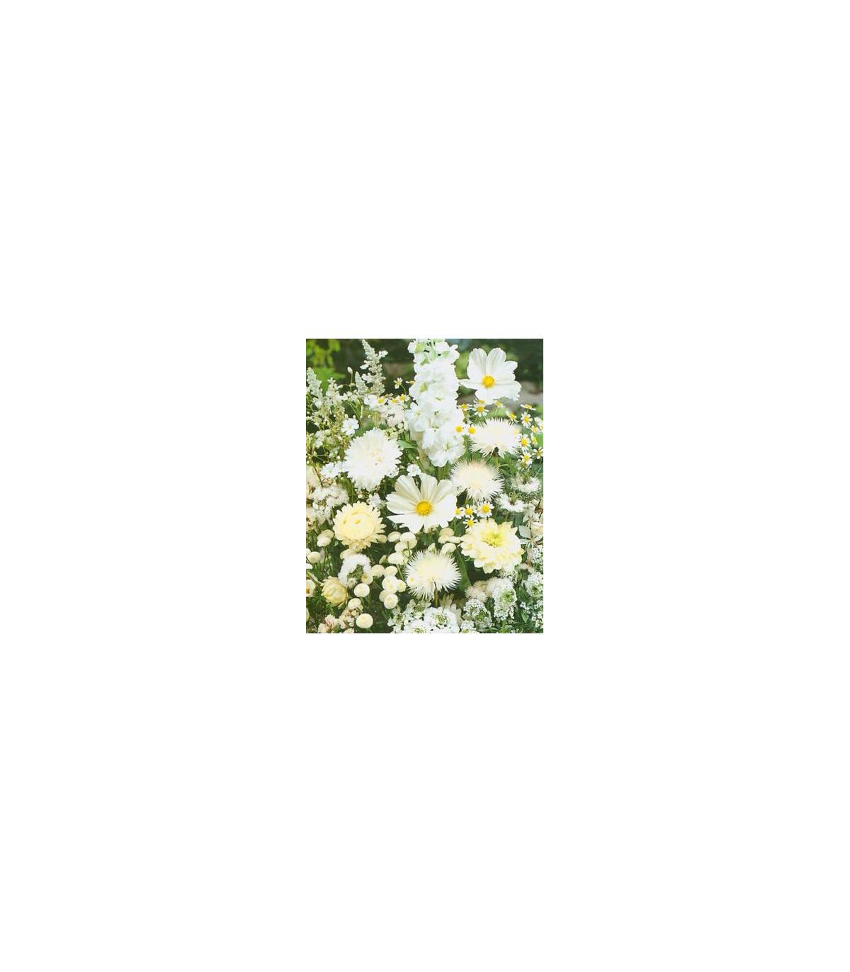 Zmes letničiek Záhradný sen v bielom - semená - 0,9 g